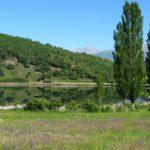 L'estany de Montsortès en plena floració. Activitats en família